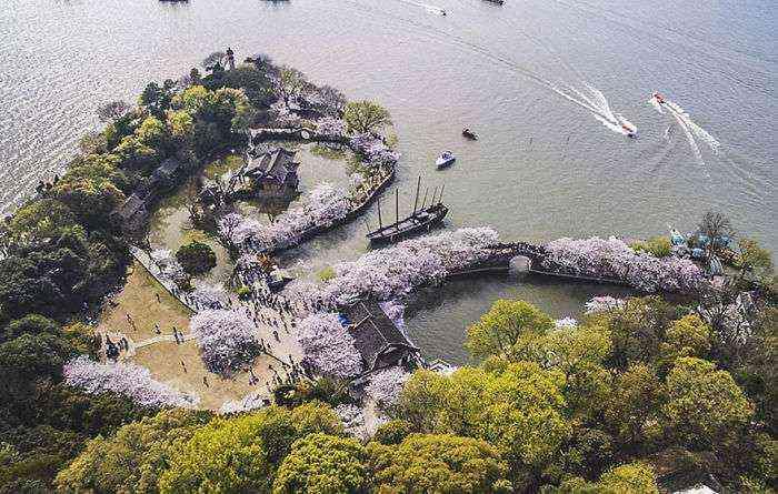 1521711143 434 han florecido los cerezos en china y probablemente sea uno de los paisajes mas increibles del planeta - Han florecido los cerezos en China, y probablemente sea uno de los paisajes más increíbles del planeta