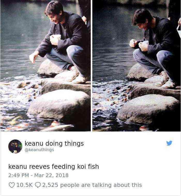 Keanu Reeves dando de comer a las carpas koi