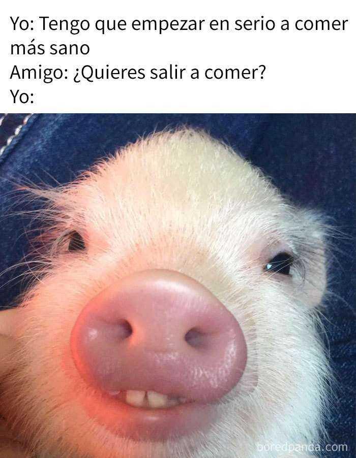 1539863119 313 10 divertidos memes sobre comida - 10+ Divertidos memes sobre comida