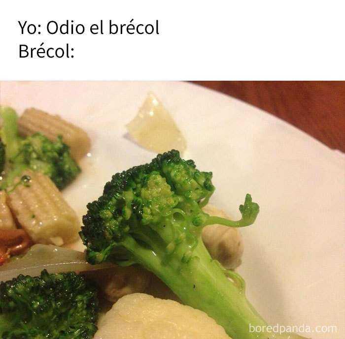 1539863120 455 10 divertidos memes sobre comida - 10+ Divertidos memes sobre comida