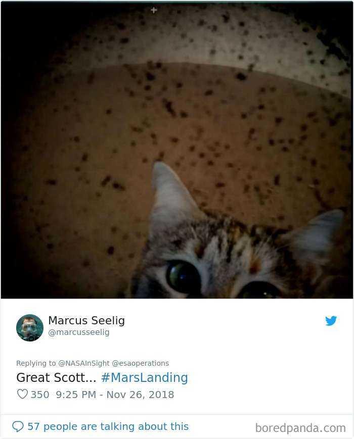 1543490368 354 30 divertidas reacciones a las primeras fotos de marte realizadas por el insight de la nasa - 30 Divertidas reacciones a las primeras fotos de Marte realizadas por el InSight de la NASA