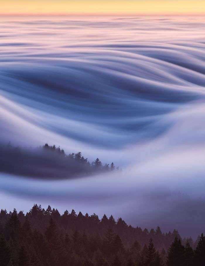 Premio del público, Lugares: Algodón de azúcar, olas de niebla, David Odisho