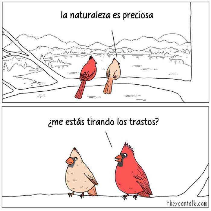 1557760907 109 muestro lo que dirian los pajaros si pudieran hablar 20 imagenes - Muestro lo que dirían los pájaros si pudieran hablar (20 imágenes)
