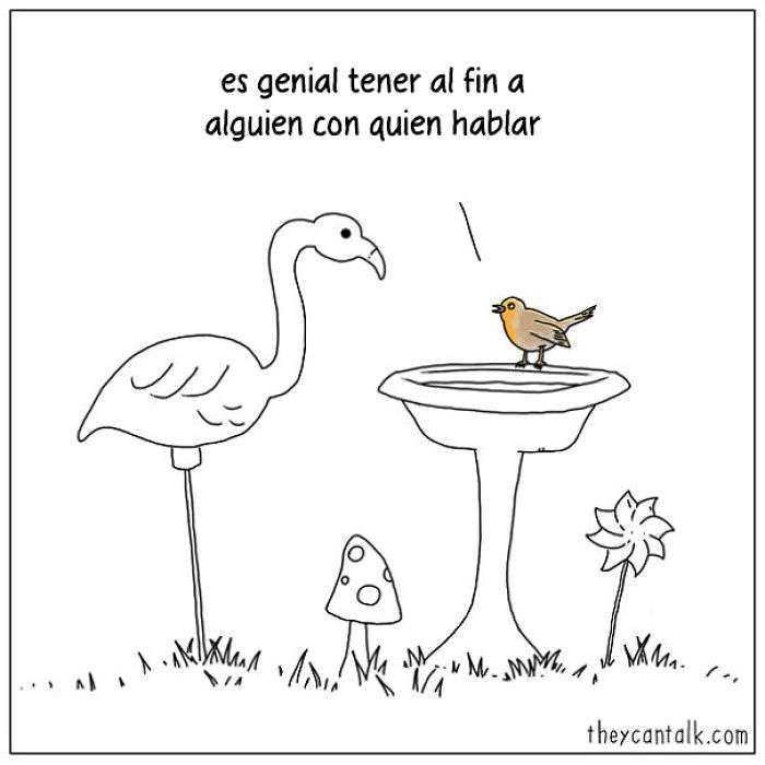1557760907 74 muestro lo que dirian los pajaros si pudieran hablar 20 imagenes - Muestro lo que dirían los pájaros si pudieran hablar (20 imágenes)