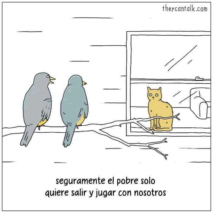 1557760907 842 muestro lo que dirian los pajaros si pudieran hablar 20 imagenes - Muestro lo que dirían los pájaros si pudieran hablar (20 imágenes)