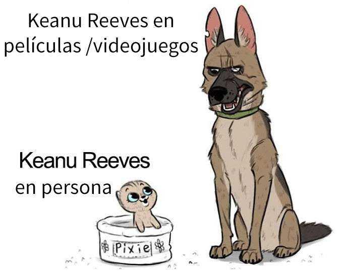 1560353510 307 keanu reeves es realmente impresionante y aqui tienes 20 memes sobre el - Keanu Reeves es realmente impresionante, y aquí tienes 20 memes sobre él