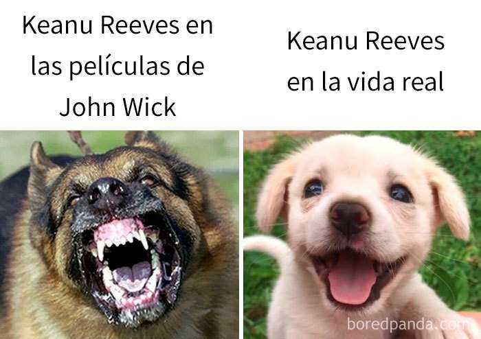 1560353510 542 keanu reeves es realmente impresionante y aqui tienes 20 memes sobre el - Keanu Reeves es realmente impresionante, y aquí tienes 20 memes sobre él