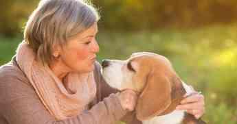 39 grandes beneficios terapeuticos de tener una mascota segun mascotaenadopcion com - Grandes beneficios terapéuticos de tener una mascota, según mascotaenadopcion.com
