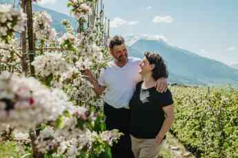 159 la floracion de los manzanos de val venosta un espectaculo de naturaleza - La floración de los manzanos de Val Venosta: un espectáculo de naturaleza