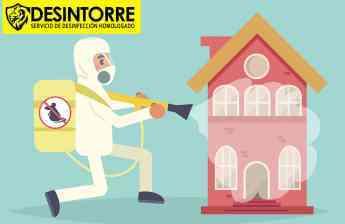 24 como eliminar ratas y ratones por desintorre - Cómo eliminar ratas y ratones. Por DESINTORRE