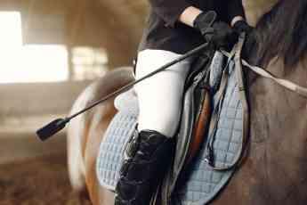 934 equipamientos imprescindibles para la equitacion - Equipamientos imprescindibles para la equitación