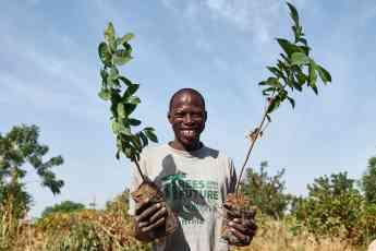 57 smoking colabora en el objetivo de plantar 54 millones de arboles en el africa subsahariana - Smoking® colabora en el objetivo de plantar 54 millones de árboles en el África Subsahariana